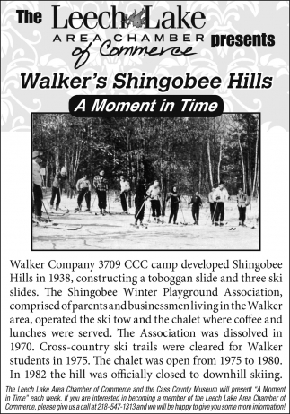 Walker's Shingobee Hills