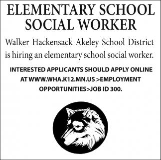 Elementary School Social Worker