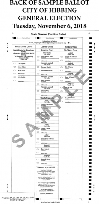 Back Of Sample Ballot