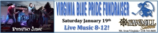 Virginia Blue Pride Fundraiser