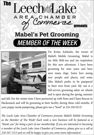 Member Of The Week