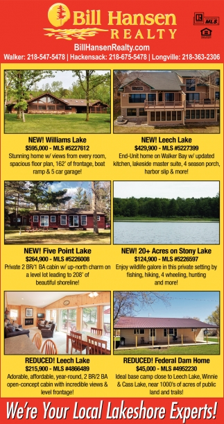 We're Your Local Lakeshore Experts!