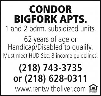 Condor Bigfork Apts.