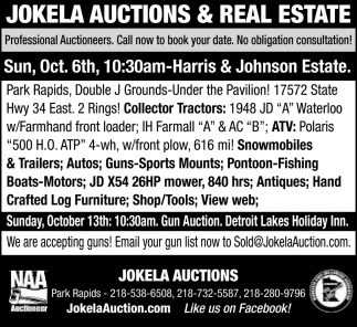 Professional Auctioneers