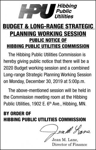 Budget & Long-Range Strategic Planning Working Session